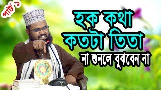 New Bangla Waz Mahfil মাঠ গরম করা নতুন ওয়াজ Maulana Mamun Hussine Habibi New Mahfil