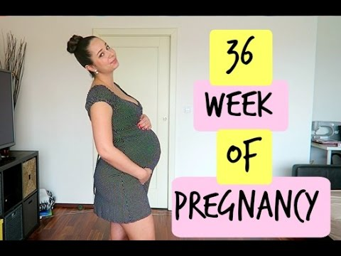 Pregnant Monday | Look At My Boobs | 36 Week Of Pregnancy
