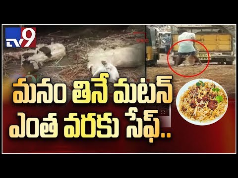 Xxx Mp4 Your Favourite Mutton Curry Can Kill You TV9 3gp Sex