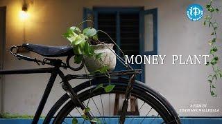 Money Plant || Latest Telugu Short Film || Directed by Shashank Mallojjala