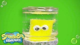 DIY Holiday Gift Guide: SpongeBob SquarePants Snowglobe | Nick