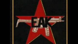EAK - Ballad Vid Minnet Av En Kamrat (COVER)