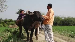 Koti Takar Krishok_Part-01_Promo_Gajor Jahid