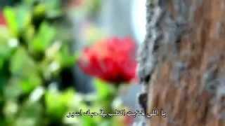 دمع الشوق - عبدالله المهداوي | HD