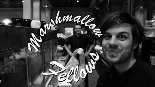 Marshmallow Fellows