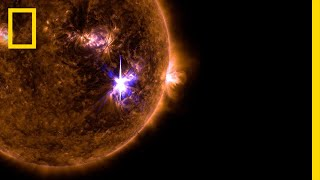 Watch the Sun Blast Out the Biggest Solar Flare in a Decade | National Geographic