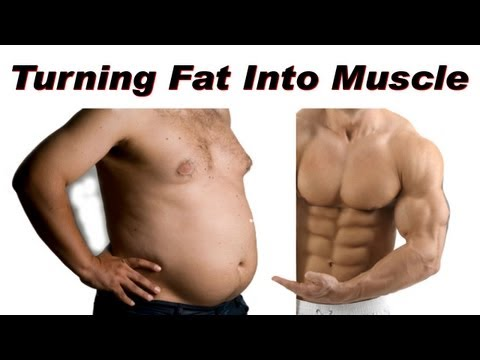 How To Turn Fat Into Muscle