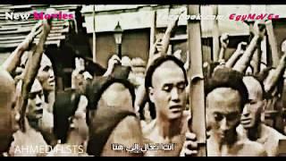 فيلم الاكشن و التشويق و القتال الصيني (القاتل) كامل و مترجم تكسير عظام يا حبيبي
