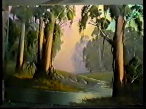 Paint Bluegum trees André Grobler