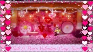 ♥ Tink & Peri's Valentine Cage Tour~2016 ♥