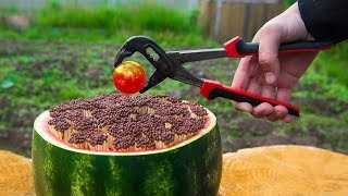 EXPERIMENT Glowing 1000 Degree BALL VS 10000 MATCHES VS WATERMELON