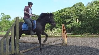 Boyfriends First Time Jumping A Horse