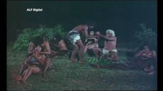 Junglee Bahaar    Full Hindi Movie  JUNGLE STORY  I Rashmi I Julia I Mahi