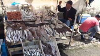 Fish market Essaouira Marroco
