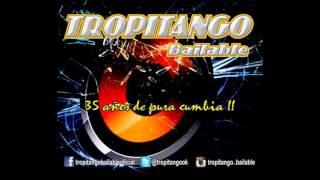 ♥ TROPITANGO ♥ - DEMASIADO TARDE (LOS DINOS)