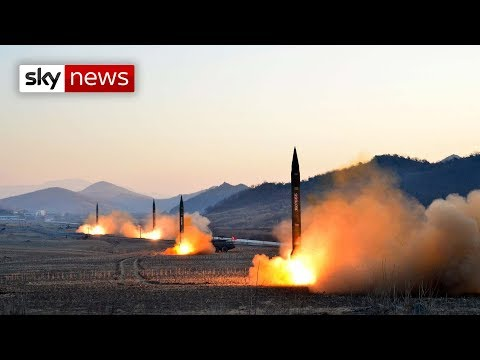 Special report North Korea Credible threat