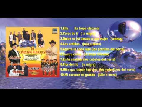 10 CAÑONAZOS MUSICALES Disco Completo