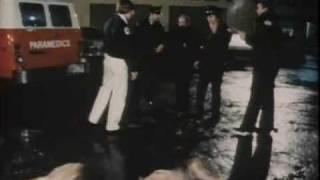 Car Thief  VS.  Two Junkyard Dogs