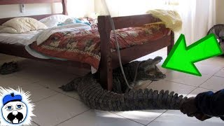 15 Most Bewildering Things Found In Hotel Rooms