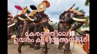 Top 10 elephants in Kerala /കേരളത്തിലെ ഉയരം കൂടിയ ആനകള്