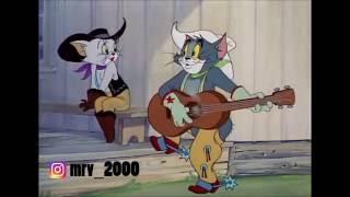 Tom and Jerry: Tom, Dolya Vorovskaya:D