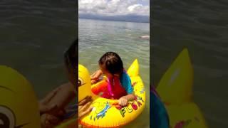 Seagull beach Davao