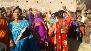 मजनू की शादी में धांसू धोबी गीत 4/02/2017