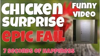 Chicken surprise epic fail 🔸7 second of happiness FUNNY Video 😂 #365