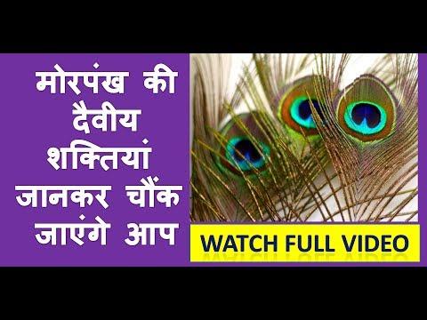 Morpankh | मोरपंख की दैवीय शक्तियां जानकर चौंक जाएंगे आप | मोरपंख वास्तु टिप्स , Morpankh Vastu Tips