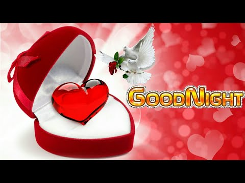 Xxx Mp4 Good Night Shayari Hindi Images Photos WhatsApp Status Video 3gp Sex