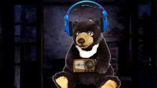 خرس رادیو گوش میده RADIO AHVAZ