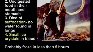 Kent Hovind - Seminar 6 - The Hovind Theory [MULTISUBS]