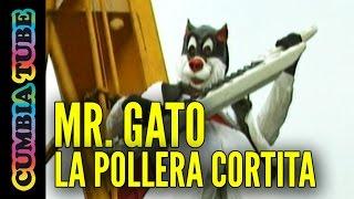 Mr. Gato - La Pollera Cortita