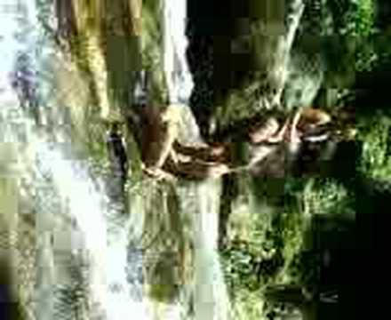 Flagras na Cachoeira.