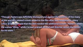 B Movie Mania -