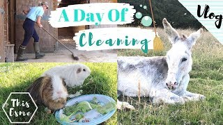 Vlog | A Day of Cleaning the Pets  + Photoshoot Prep! | This Esme