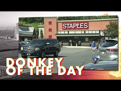 Xxx Mp4 Staples Donkey Of The Day 3gp Sex