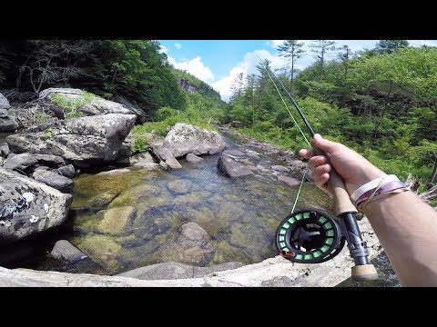 CRYSTAL CLEAR Creek Fishing in Tennessee Mountains