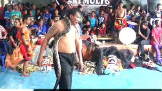 Download atraksi ular DIGIGIT SAMPAI BERDARAH bersama seni barong SRI MULYO