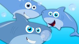 Five Little Sharks   Shark Song   Nursery Rhymes   Baby Rhymes   Kids Songs   Children Videos