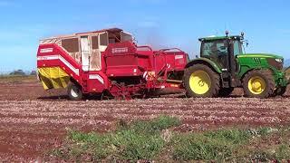 Looseleigh Onion Harvest Part 1.