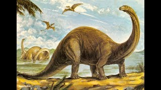 Interesting Facts About Brontosaurus !!!!!
