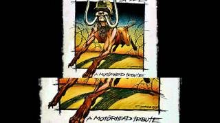 Dropkick Murphys - Rock And Roll (Motorhead Cover)