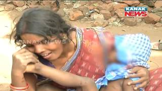 Stray Dogs Kill Child In Puri: PIL Filed In High Court Demanding Compensation