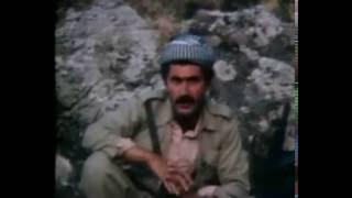 The Iran - Iraq war 1980-1988