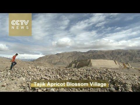 Living as a Tajik