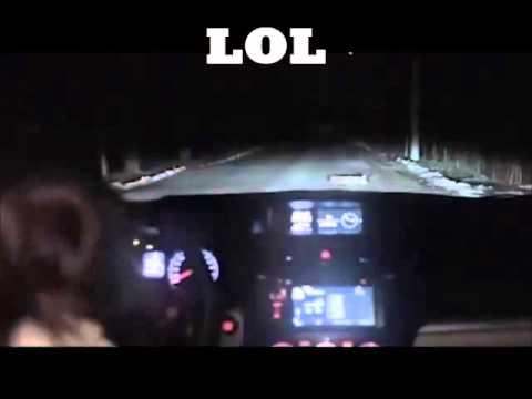 Xxx Mp4 Woman Hits Dog Then Gets Car Jacked 3gp Sex