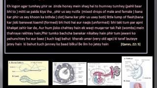 Bachcha Maa ke pait mein kis tarah banta hai ye Quran mein hazaron saal pahley bata diya gaya hai