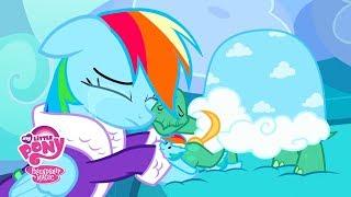 MLP: Friendship is Magic Season 5 - 'Rainbow Dash's Pet Less Winter!' Official Clip