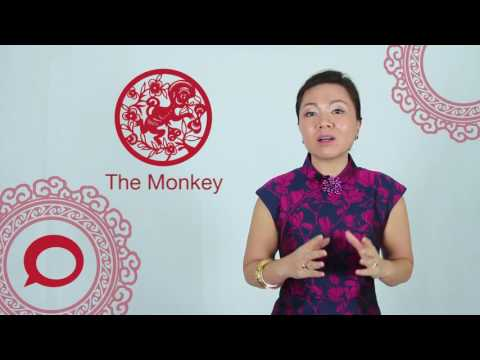 The Monkey 2017 Chinese Zodiac Predictions With Jessie Lee The Coverage